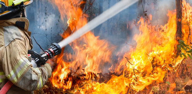 How to Get Rid of Fire Smoke in House