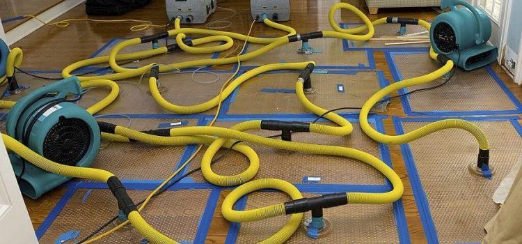 Water Mitigation Services Washington DC